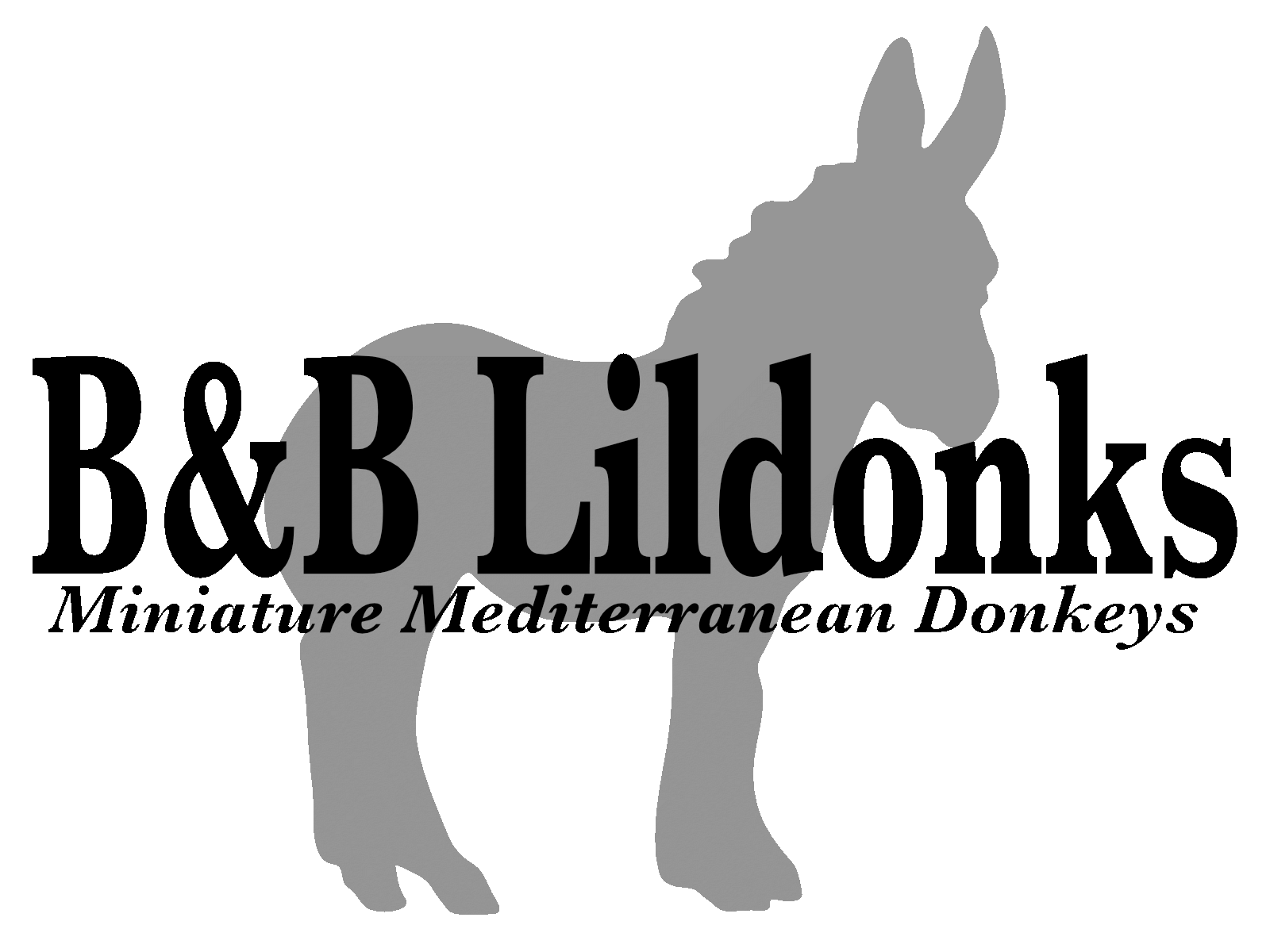 B and B Lildonks - Full Logo